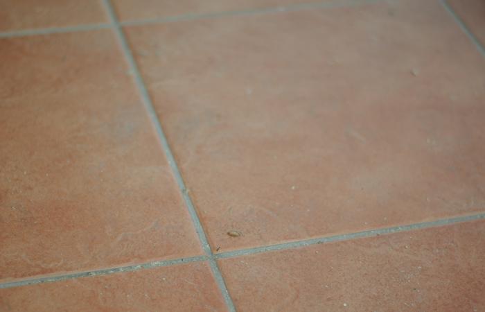 Reinigung von Böden durch Trockeneisstrahlen